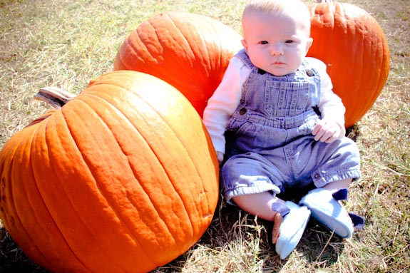 Zeke at the pumpkin patch