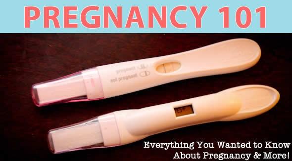pregnancy 101