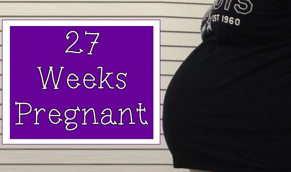 27 Weeks Pregnant – Hump Day Bump Day